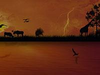 african wildlife scene