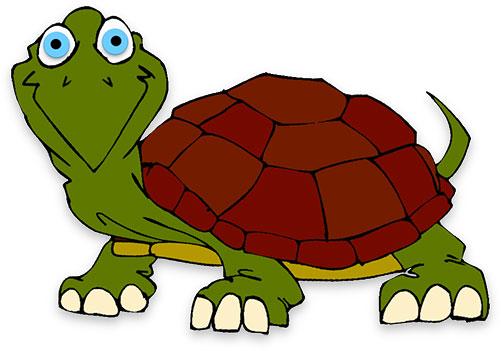 big eyed happy turtle
