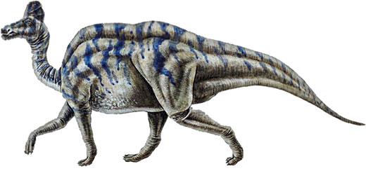 grey dinosaur walking