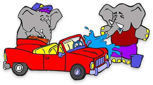 elephants washing a car