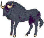 yak standing