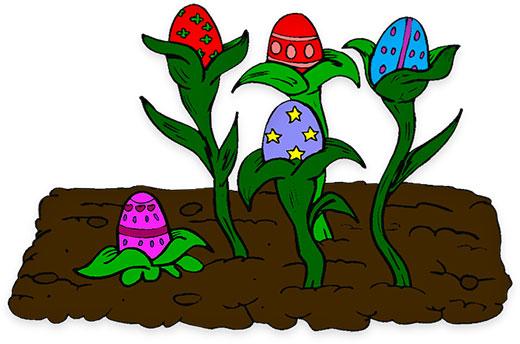 where Easter eggs grow