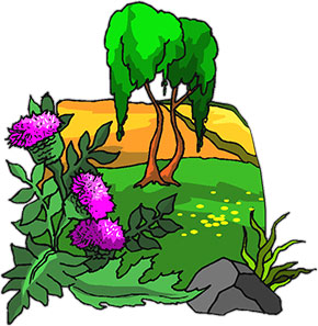 tree with purple flowers
