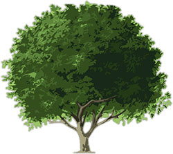 Free Animated Trees - Tree Clipart - Flowers