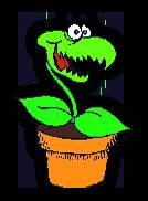 happy flytrap
