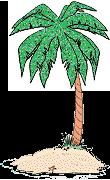 palm tree on a small island