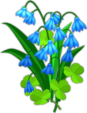 blue flowers with clover