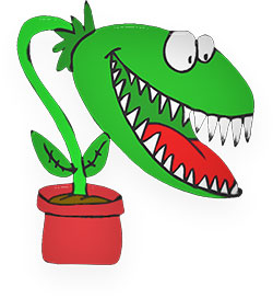 flytrap with big teeth