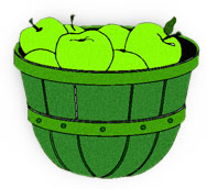 bushel of green apples