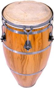 bongo image