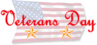 Veterans Day with gold stars